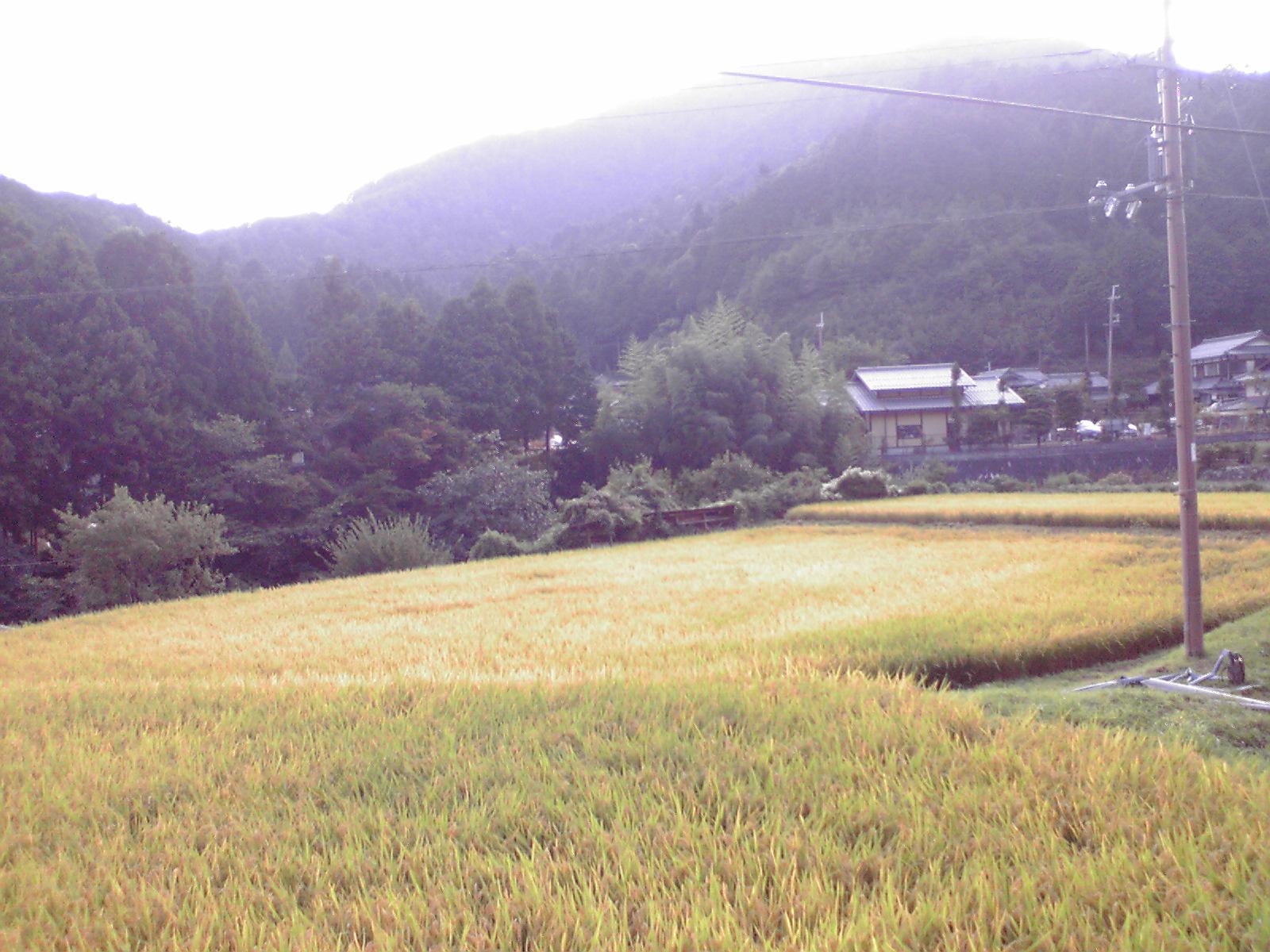 Osakakyoto_022
